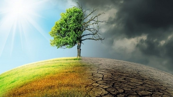 mckinsey 8 13 of asia gdp faces climate change risks by 2025