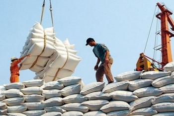 80000 tonnes of duty free rice to penetrate into the eu market