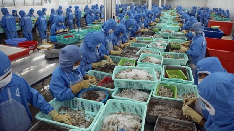 Vietnamese seafood exports increase after EVFTA comes into force