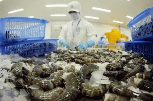 Korea raises the import of Vietnam's shrimps