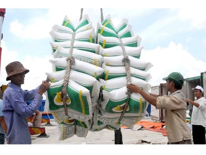 5947 vietnam rice 2020