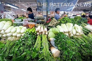 thailand is the largest exporter of vegetables of asean