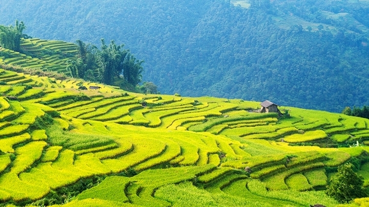 Vietnam launches campaign on YouTube to stimulate domestic tourism industry