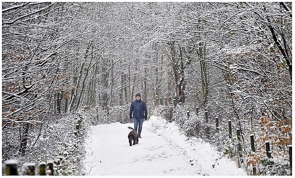 UK and europe weather forecast latest, january 10: snow to blanket the uk as polar air strike