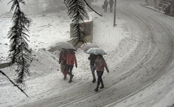 india daily weather forecast latest january 26 capital region braces for cold day conditions with dense fog