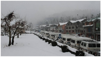 india daily weather forecast latest january 28 severe cold wave with dense fog to impact northwestern areas