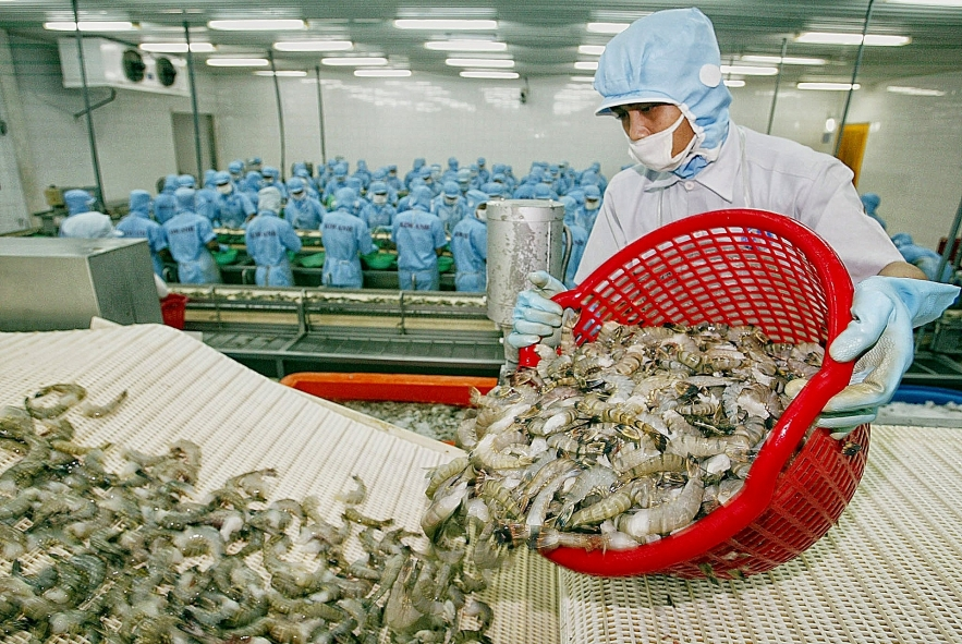 vietnam shrimp exports head to increase in may amid covid 19 pandemic