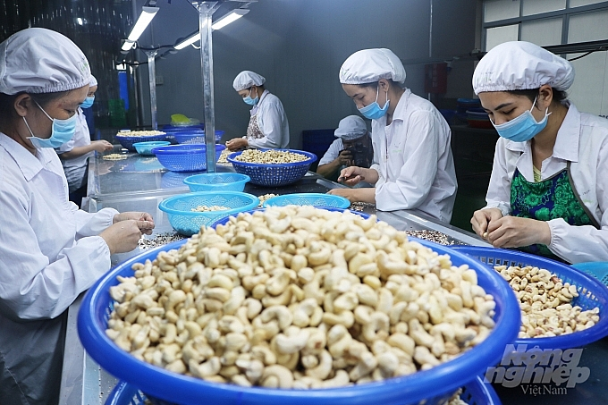 Vietnam's recovery expectation ranks second in ASEAN in agri-food industry