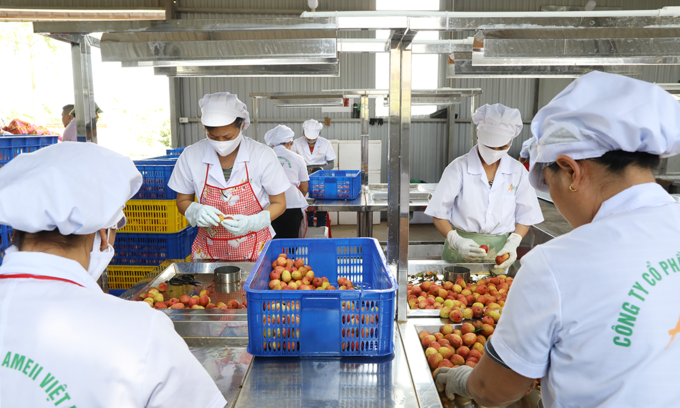 Vietnamese exporters to have greater opportunities in the U.S. market