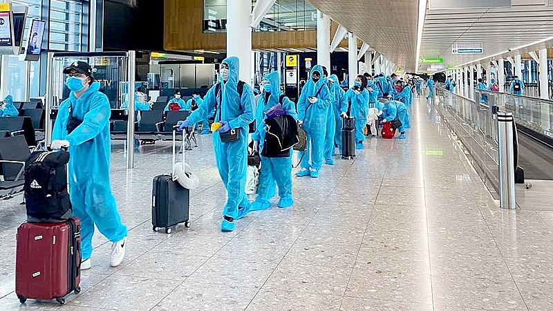 vietnam reviews businesses taking advantage to import unqualified foreigners