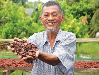 overseas vietnamese old man dreams of making made in vietnam chocolate