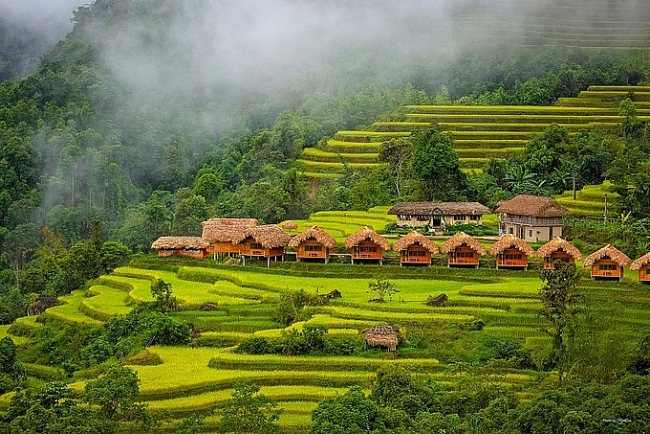 4 preferred homestays in Ha Giang to enjoy the buckwheat season