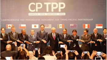 vietnam ready to share information and experience in cptpp with the uk