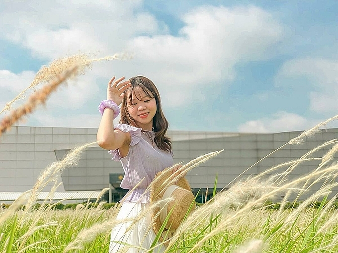 3 picturesque grasslands attract the young in hanoi