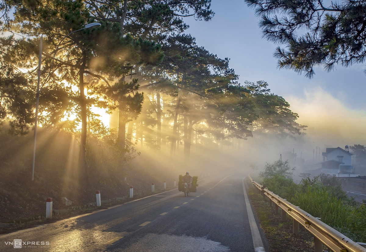 Admiring the mysterious beauty of Da Lat in early winter