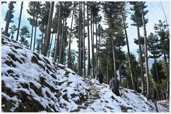 india weather forecast latest december 16 cold expected as minimum temperatures continue to fall