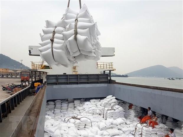 asian rice market vietnam pushes the peak of export price