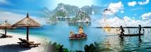 coronavirus in vietnam total covid 19 patients to 66