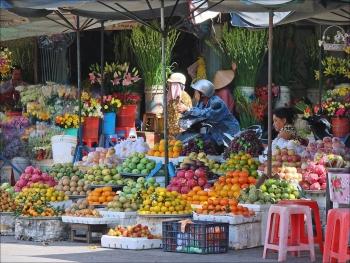 vietnams 10 life worth reasons through a canadian writers eyes