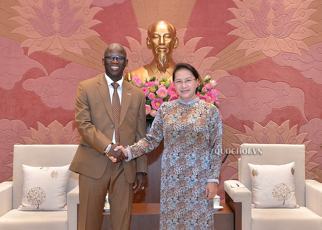 Vietnam NA Chairwoman meeting with the World Bank