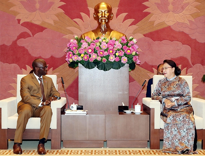 vietnam na chairwoman meeting with the world banks country director for vietnam