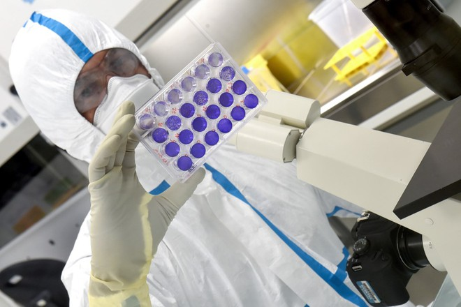 coronavirus crisis who warns of no perfect vaccine helping stop the covid 19
