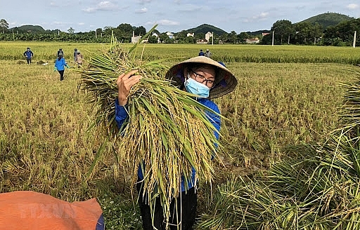 Vietnam's 17 identified goals for sustainable development to 2030