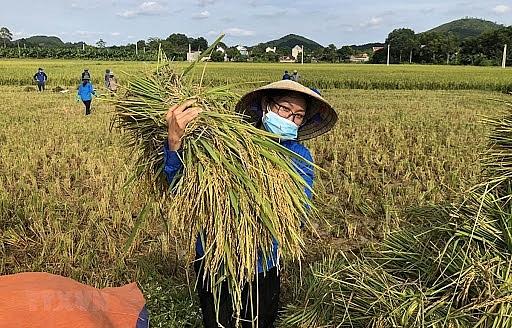 vietnams 17 identified goals for sustainable development to 2030