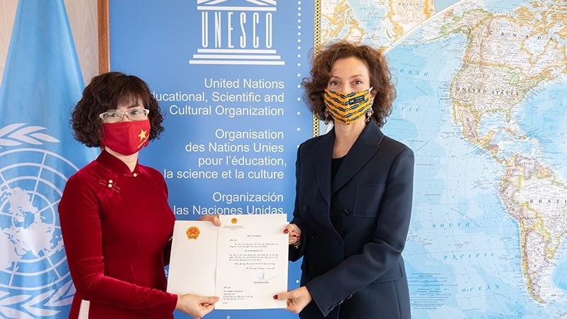 vietnamese ambassador at unesco presents credentials