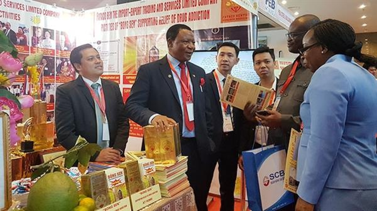Huge opportunities for Vietnam's broader economic cooperation to join French-speaking Africa