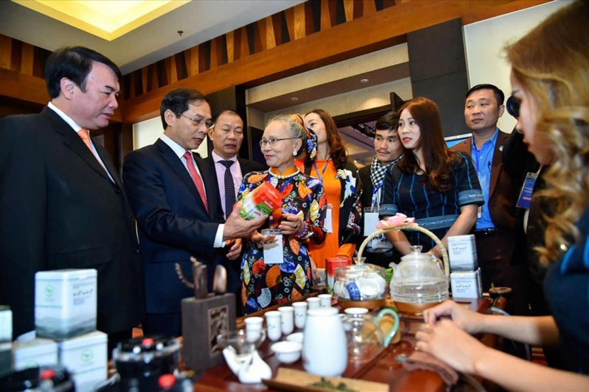 Long-term prospects for Vietnamese ties with Middle East, Africa