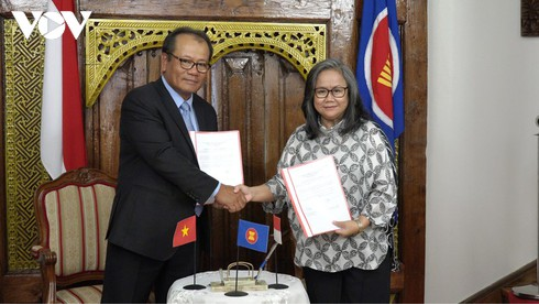 vietnam contributes in the role of asean committee chair in czech republic