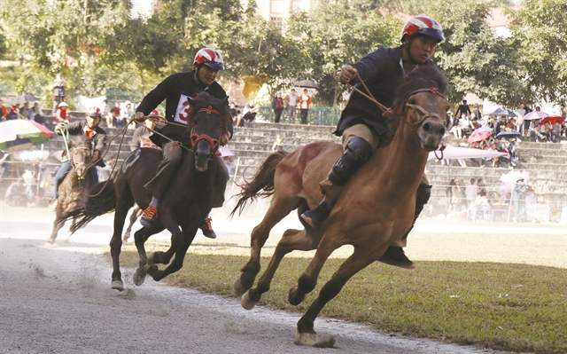 Bac Ha traditional horse race recognised as national intangible heritage