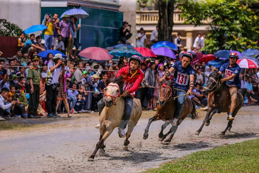 Bac Ha traditional horse race recognized as national intangible heritage