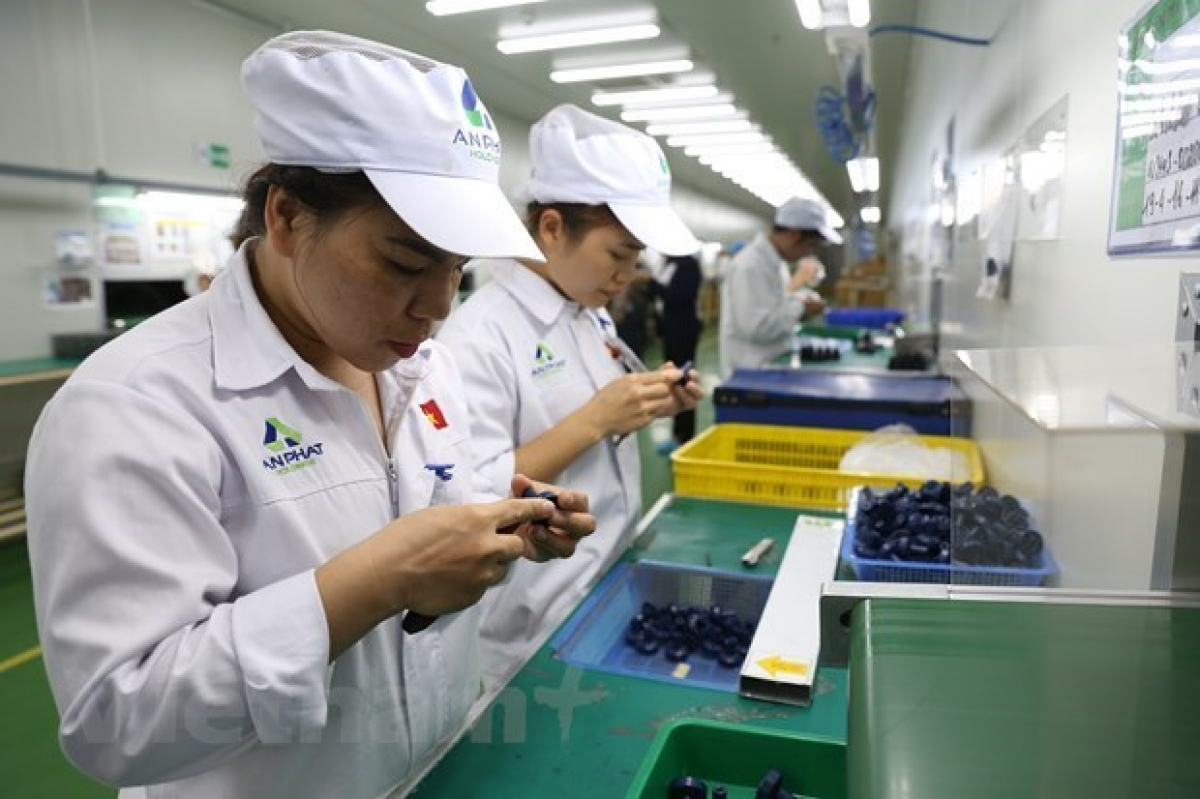 Overseas investment by Vietnamese firms neared US$547 million in the first half of 2021 (Illustrative photo: VNA)