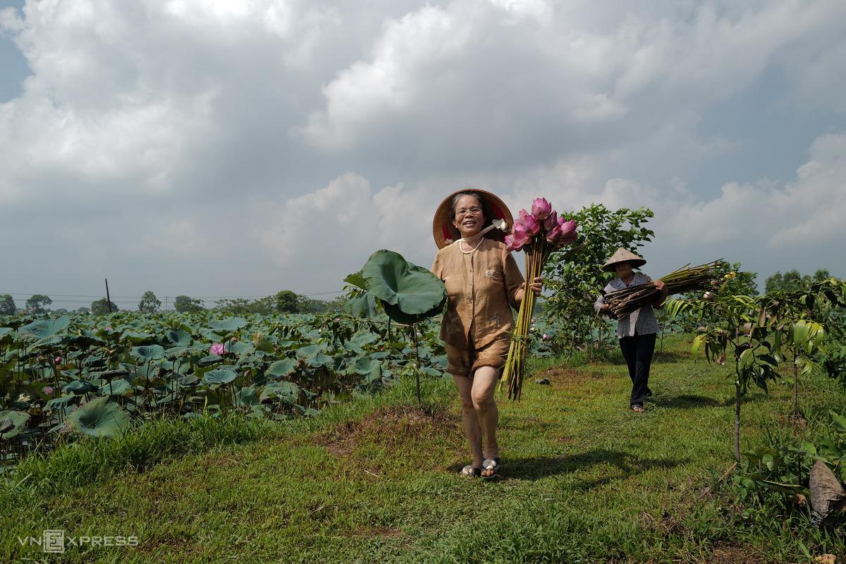 Vietnamese Artisan Weaves New Lotus Silk
