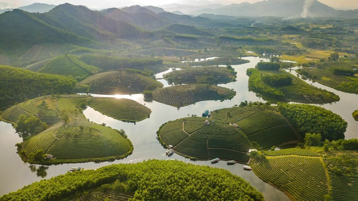 What Is Vietnam's Largest Province?