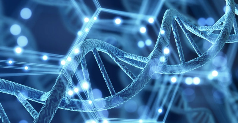 Genetica uses genetic engineering by artificial intelligence (AI). Photo: AFP