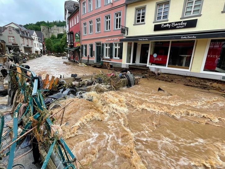 Vietnamese in Germany Help Host Country Overcome Flood Consequences