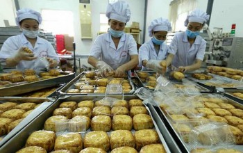 Mooncakes Amid Covid-19: How an Ancient Tradition Continues During the Pandemic