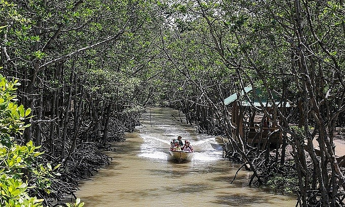Tourists join a boat tour inside a mangrove forest in HCMC's Can Gio District, July 2020. Photo: VnExpress