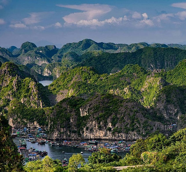 Cat Ba Nominated as World Natural Heritage Site