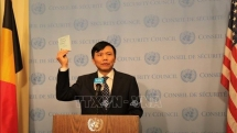 foreign diplomats congratulate vietnam on fulfilling role of unsc president