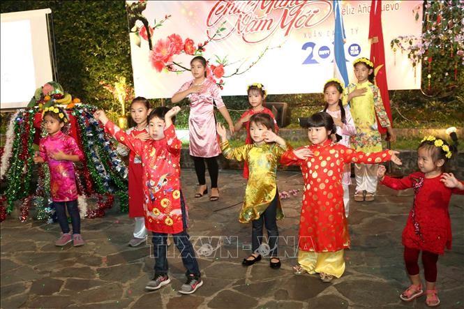 overseas vietnamese celebrate tet canh ty