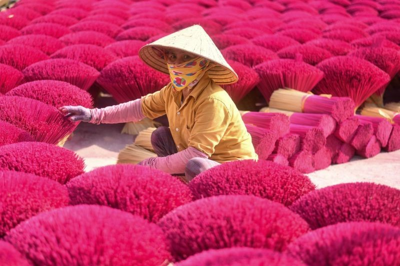 vietnams incense village prepares for lunar new year