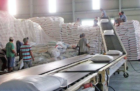 vietnam needs to find new rice markets to replace china experts