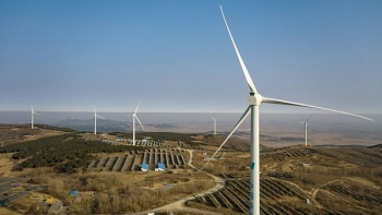Australia, Japan and Vietnam lead renewable energy shift in Asia Pacific