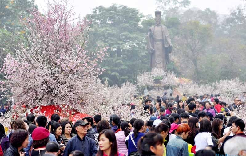 japan cherry blossom festival hanoi 2020 cancelled