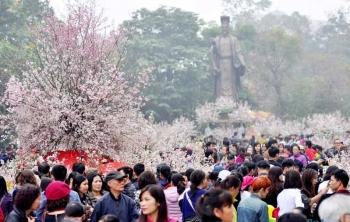 Japan cherry blossom festival – Hanoi 2020 cancelled