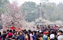 japan cherry blossom festival hanoi 2020 cancelled
